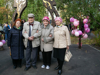 Правительство региона сформировало программу декады пожилых людей